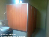 Cubicle phenolic